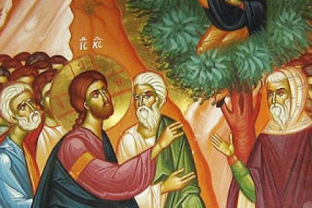 November 3; 31st Sunday in Ordinary Time; Year C