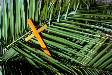 Apr 9; Palm Sunday of the Lord's Passion
